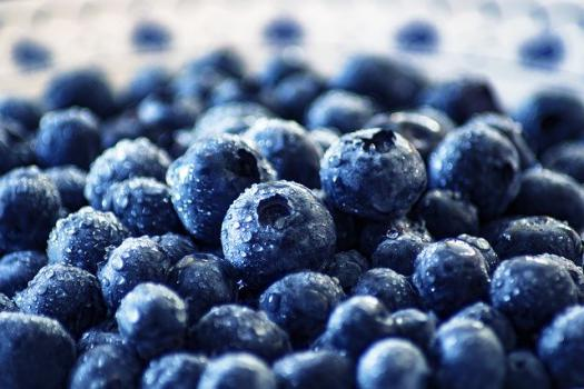 arandano-fruta